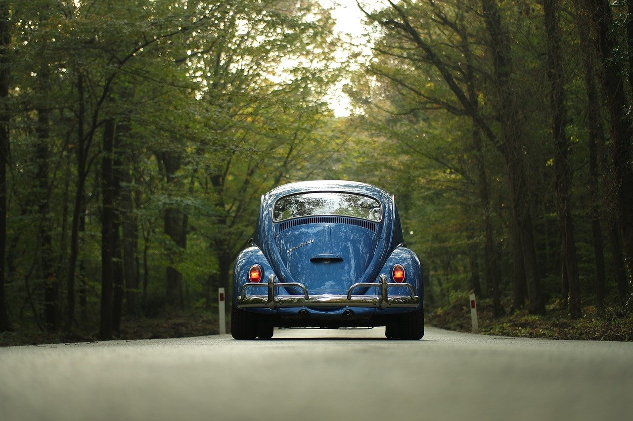 vw, beetle, car